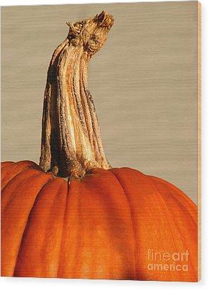 Fall Rising Wood Print by Amanda Barcon