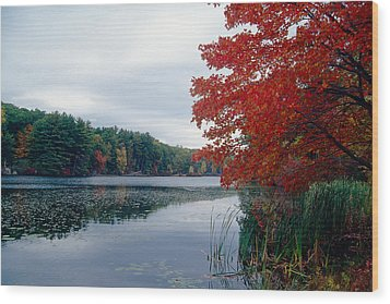 Fall Scenic Little Long Pond Harriman State Park New Wood Print by George Oze