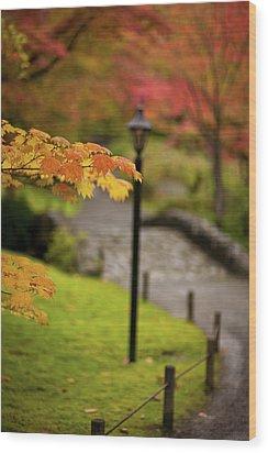 Fall Serenity Wood Print by Mike Reid
