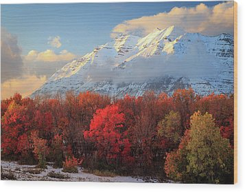 Wood Print featuring the photograph Fall Snow On Timpanogos. by Johnny Adolphson