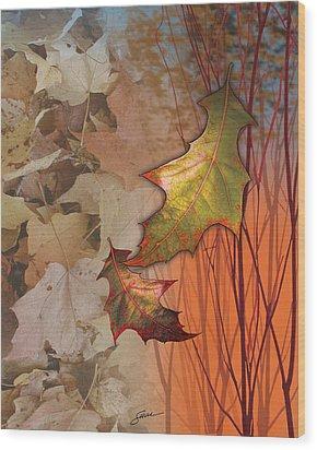 Fall Spectrum Wood Print by Harold Shull