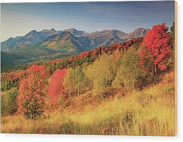 Wood Print featuring the photograph Fall Splendor With Mount Timpanogos. by Johnny Adolphson