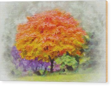 Fall Tree Wood Print by Greg Collins