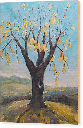 Fall Tree In Virginia Wood Print by Becky Kim