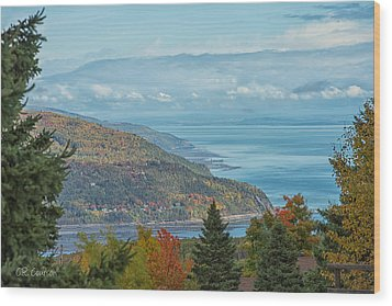 Fall View Of The St. Lawrence Wood Print by CR  Courson