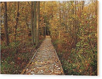 Fall Walk Wood Print
