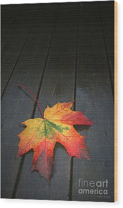 Fall Wood Print by Winston Rockwell