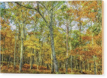 Fall Yellow Wood Print