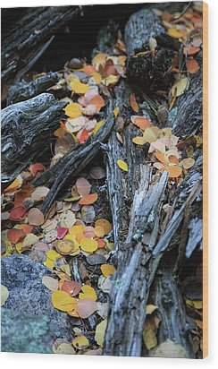 Wood Print featuring the photograph Fallen by David Chandler