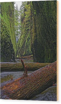 Wood Print featuring the photograph Fallen by Jonathan Davison