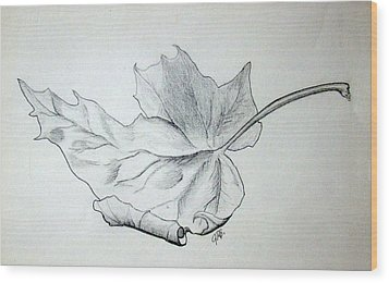 Fallen Leaf Wood Print by J R Seymour
