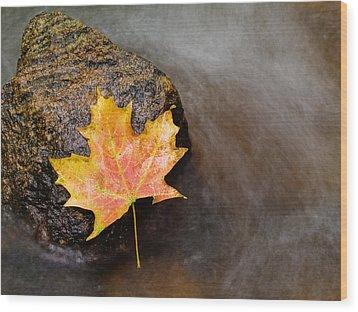 Fallen Leaf Wood Print