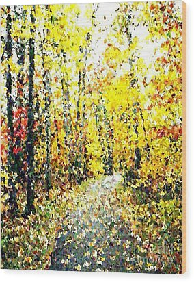 Fallen Leaves Of Autumn Wood Print by Don Phillips