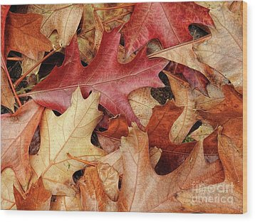 Wood Print featuring the photograph Fallen by Peggy Hughes