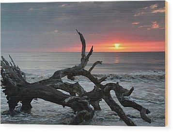 Fallen Tree In Ocean At Sunrise Wood Print by Bruce Gourley