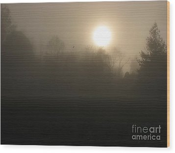 Falling Leaf In Morning Fog Wood Print