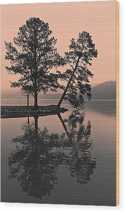 Wood Print featuring the photograph Falling Tree Reflections by Ron Dubin