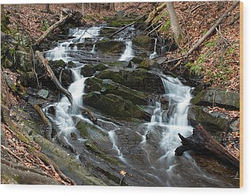 Falling Waters In February Wood Print by Jeff Severson