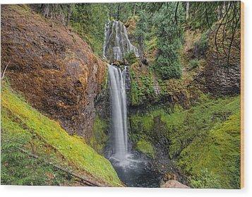 Falls Creek Falls Wood Print by David Gn
