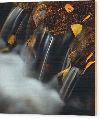 Falls Of Autumn Wood Print by Steven Milner