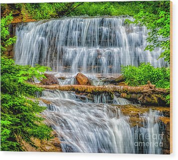 Wood Print featuring the photograph Falls On Sable Creek by Nick Zelinsky