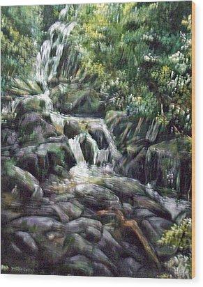 Falls  Wood Print by Paul Weerasekera