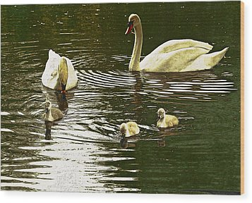 Wood Print featuring the photograph Family Day Out  by Fine Art By Andrew David