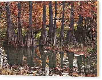 Wood Print featuring the photograph Family Of Cypress At Lake Murray by Tamyra Ayles