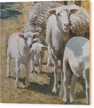 Family Of Sheep Wood Print by John Reynolds