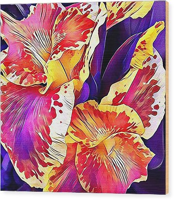 Wood Print featuring the photograph Fanciful Canna  by Heidi Smith