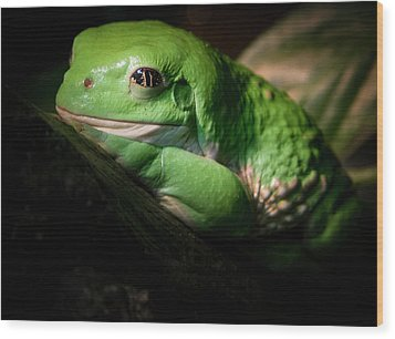 Wood Print featuring the photograph Fantastic Green Frog by Jean Noren