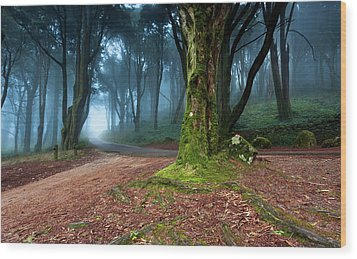 Wood Print featuring the photograph Fantasy by Jorge Maia