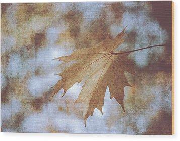 Wood Print featuring the photograph Farewell Summer by Ari Salmela