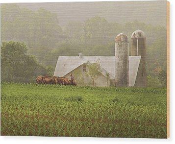 Farm - Farmer - Amish Farming Wood Print by Mike Savad