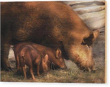 Farm - Pig - Family Bonds Wood Print by Mike Savad