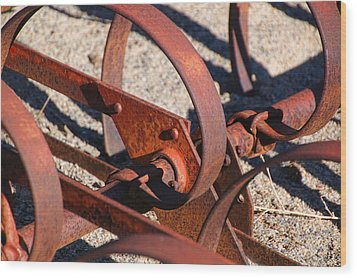 Wood Print featuring the photograph Farm Equipment 4 by Ely Arsha