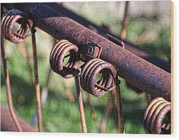 Wood Print featuring the photograph Farm Equipment 6 by Ely Arsha