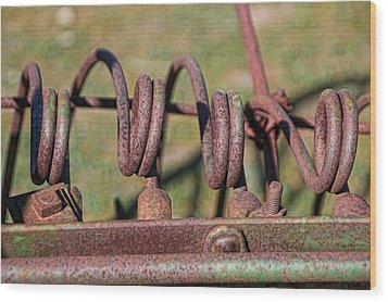 Wood Print featuring the photograph Farm Equipment 7 by Ely Arsha