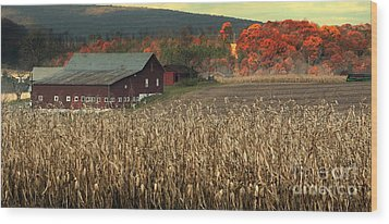 Farm Fall Colors Wood Print by Chuck Kuhn