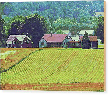 Farm Homestead Wood Print by Susan Savad