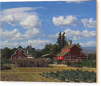 Farm House Wood Print by Scott Brown