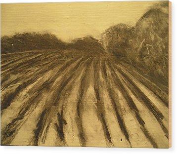 Farm Land Study Wood Print by Jaylynn Johnson