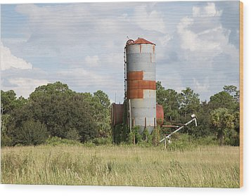 Farm Life - Retired Silo Wood Print by Christopher L Thomley