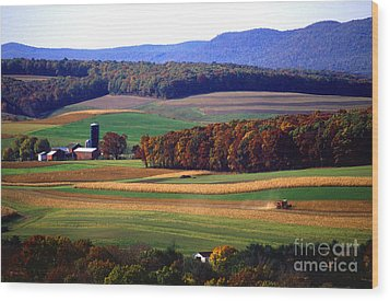 Farm Near Klingerstown Wood Print by USDA and Photo Researchers