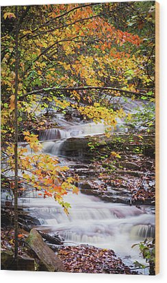 Wood Print featuring the photograph Farmed With Golden Colors by Parker Cunningham