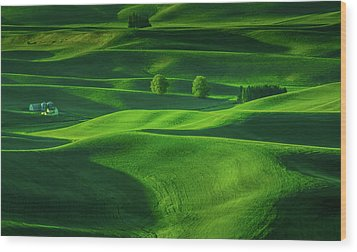 Farmhouse In The Waves Of Light Wood Print by Don Schwartz