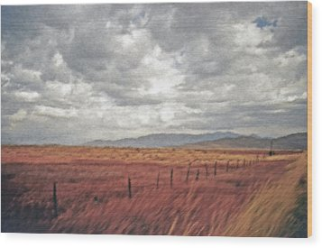 Farmland 2 Wood Print by Steve Ohlsen