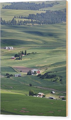 Farmland In Eastern Washington State Wood Print