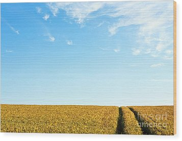 Farmland To The Horizon 1 Wood Print by Heiko Koehrer-Wagner