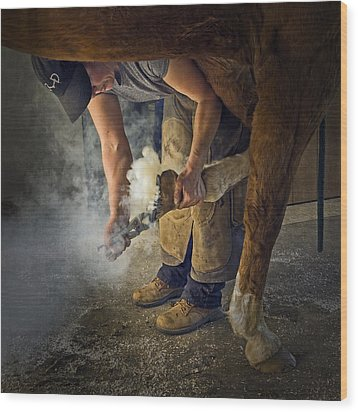 Farrier Visit - 365-46 Wood Print by Inge Riis McDonald